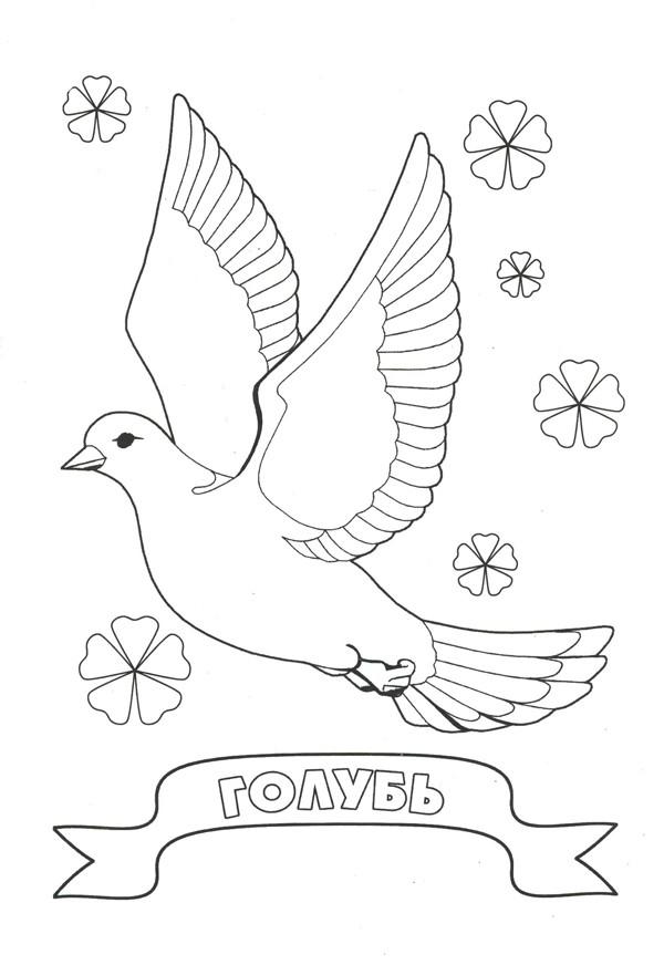 Как нарисовать голубя на открытку 9 мая, днем рождения
