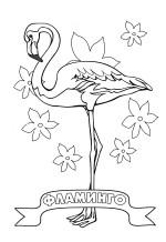 Фламинго раскраски птиц