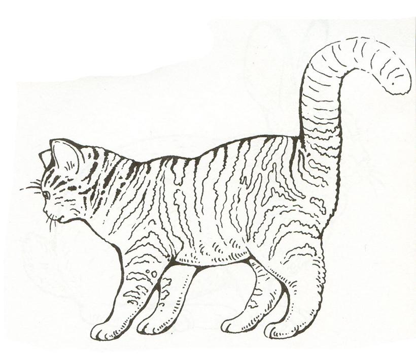 Аниме раскраски коты