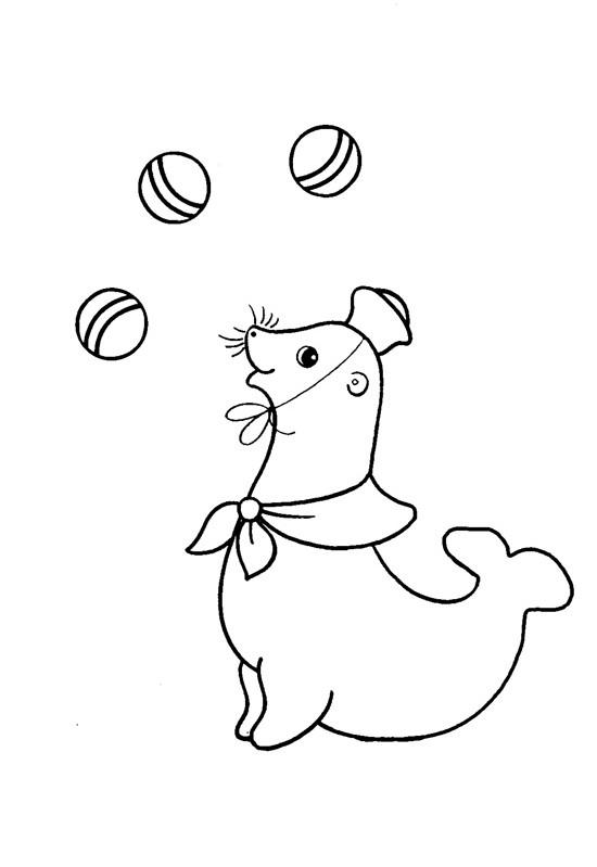 Тюлень жонглёр раскраски для малышей